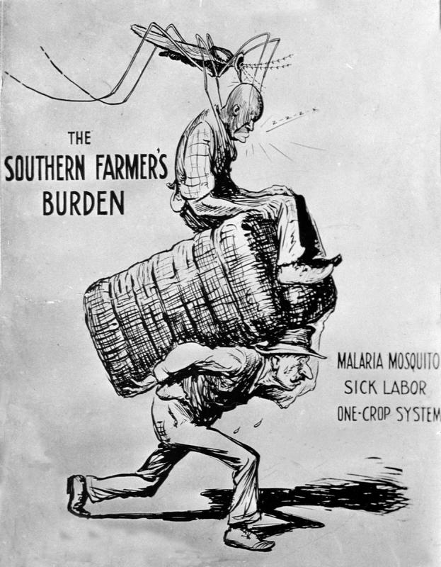 Southern Farmer's Burden-malaria mosquito/sick labor: USPHS 1923 cartoon