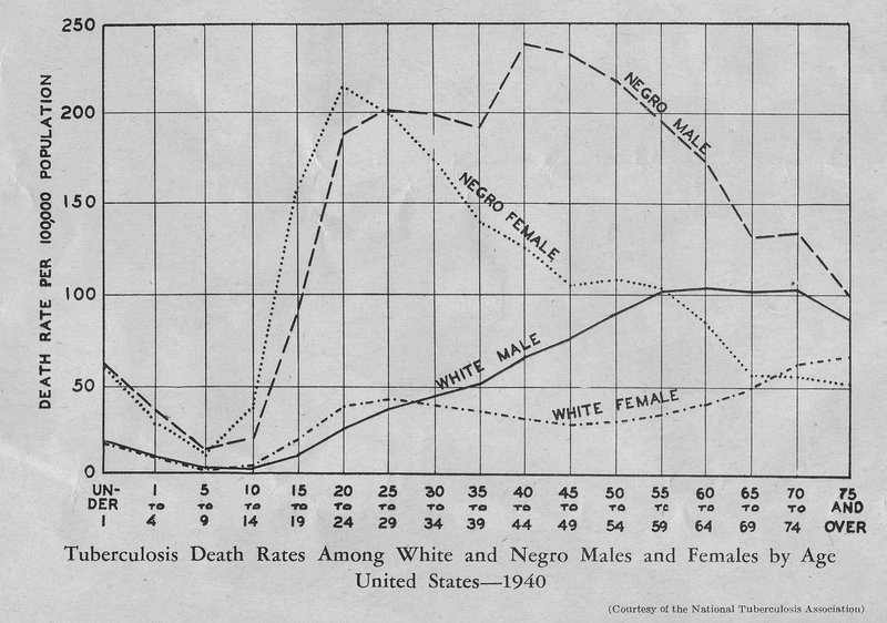 US TB death rate among whites & negro males