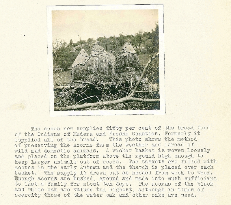 Photograph and description of method for preserving acorns from survey report that included Fresno and Madera counties, California, ca. 1920 &lt;br /&gt;<br />