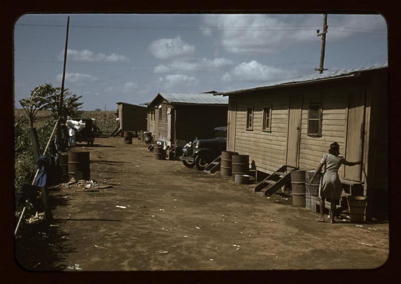Houses condemned by Board of Health but still occupied by Negro migratory workers, 1941