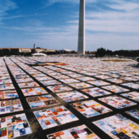 The AIDS Memorial Quilt, spread out on the National Mall.