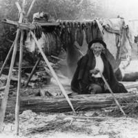 Salishan man named William We-ah-lup smoking salmon, Tulalip Indian Reservation, Washington, 1906.